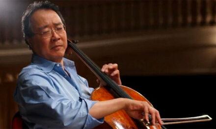 5 easy to follow tips for proper cello care & maintenance